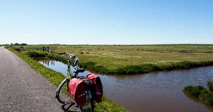 Hummer, Gänse und eine Kirche  –  Radtour in Zeeland, Teil 2