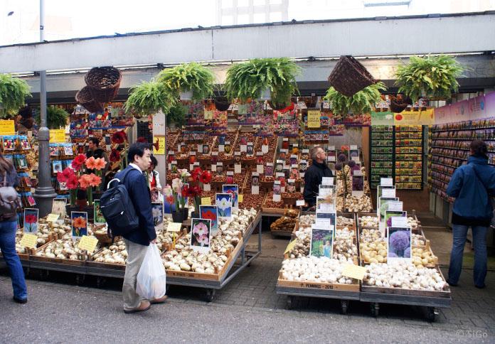 07-blumenmarkt