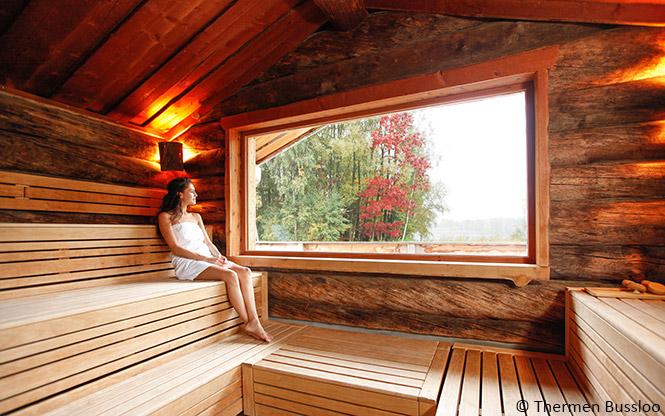Thermen Bussloo Panorama Sauna
