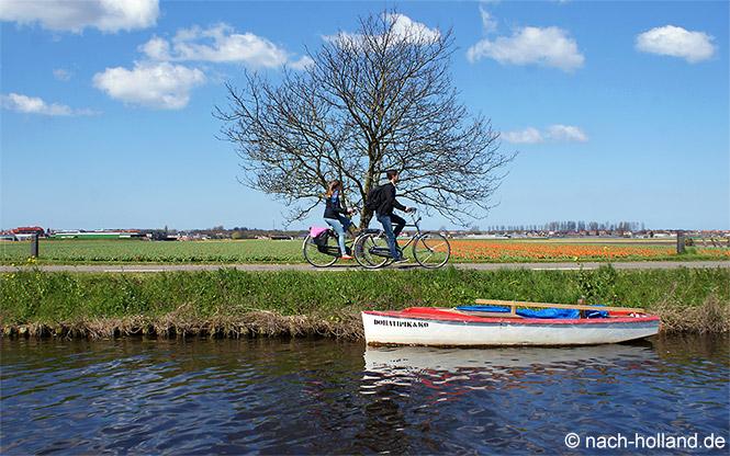 Erste Tulpenfelder im Bollenstreek in Holland