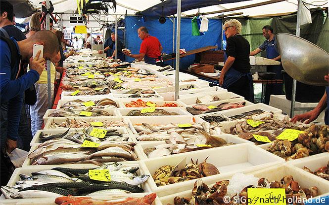 Fisch auf dem Wochenmarkt in Holland