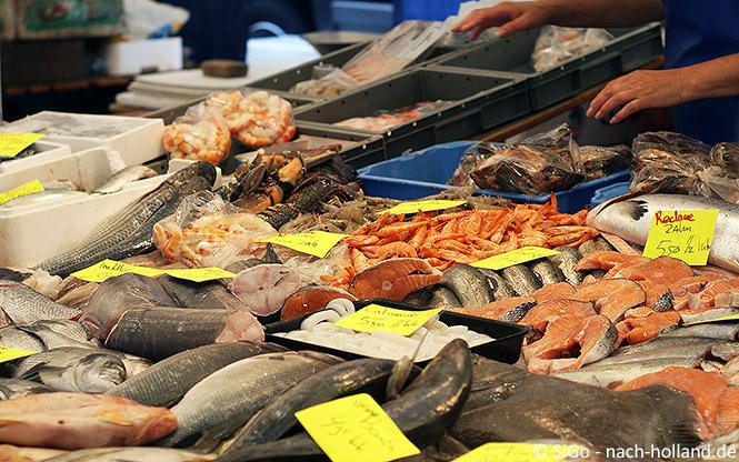 Frischer Fisch auf dem Wochenmarkt in Holland