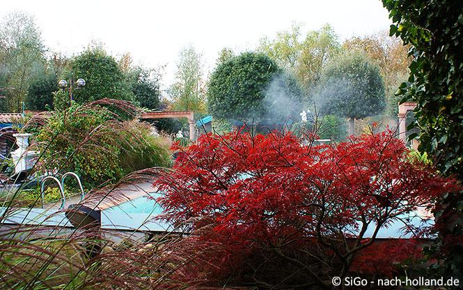 Pool im Wellness-Zentrum Palestra im Ferienpark Landal Stroombroek
