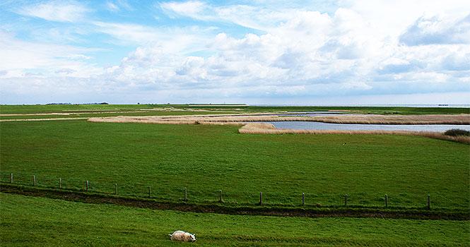 Schöne Landschaften auf der Insel Texel