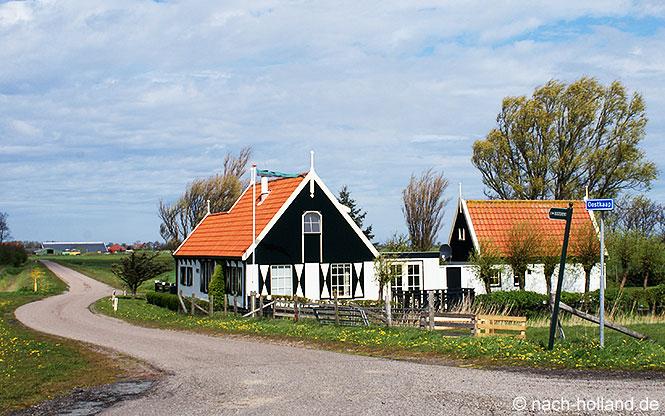Bauernhäuschen auf Texel