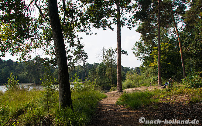 Brabant Radtour oisterwijk bos