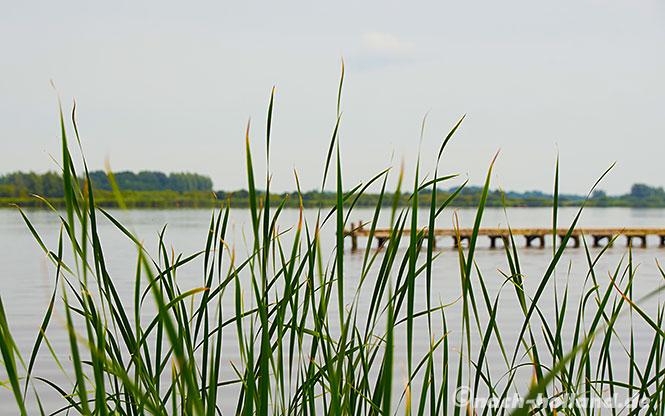 Friesland see