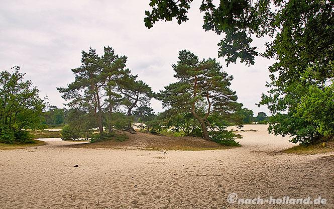 radtour utrecht - amersfoort sandfläche