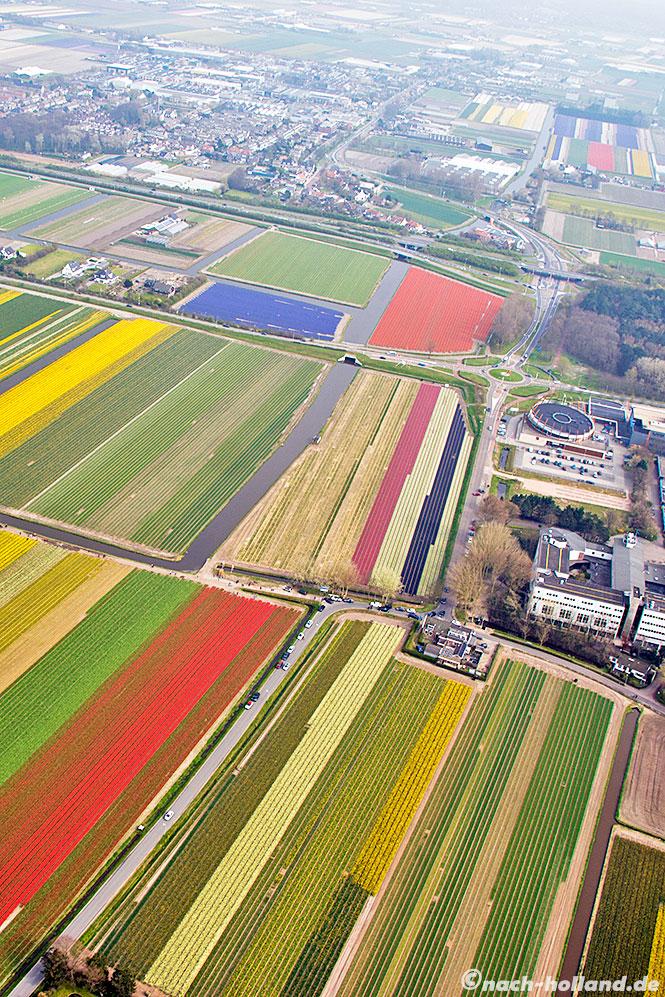 noordwijk tulpenfelder heli