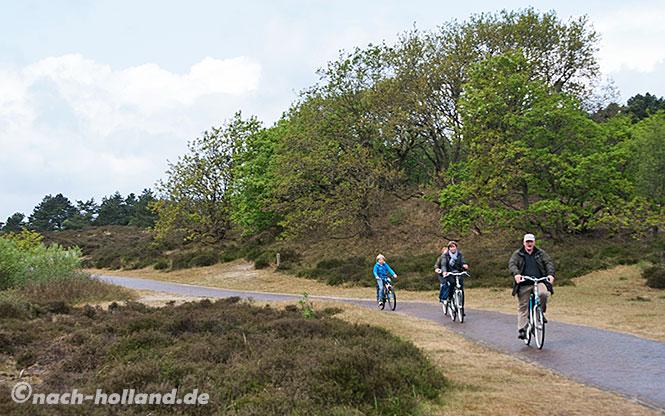 Rad fahren auf der Breede Duineroute