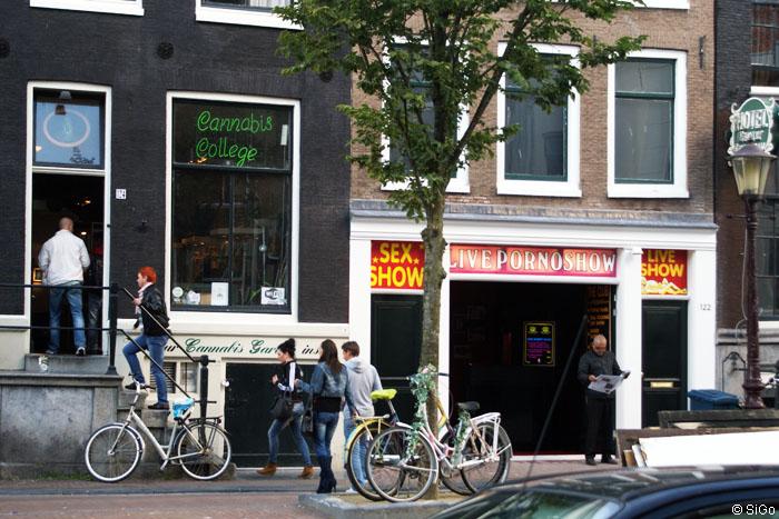 Das Rotlichtviertel Wallen Amsterdam
